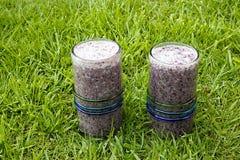 2 здоровых питья, smoothies голубики с молоком кокоса служили на траве Стоковое фото RF