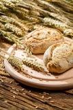 2 здоровых плюшки испеченной от свежего зерна Стоковые Фотографии RF