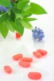 здоровье внимательности Стоковые Фотографии RF