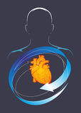 Здоровье сердца Стоковая Фотография RF