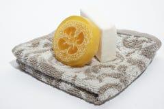 здоровье чистоты предпосылки изолировало белизну полотенца мыла pledge Стоковое Изображение RF