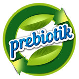 Здоровье элемента логотипа, prebiotik Стоковые Изображения RF