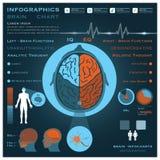 Здоровье Infographic Infocharts мозга и медицинская Стоковые Изображения RF
