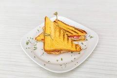 Здравица сандвича зажаренная с сыром и томатами стоковые фото
