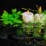 Здравоохранение курорта зеленых спаржи, папоротника и свечей ветви на z Стоковая Фотография