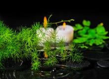 Здравоохранение курорта зеленых спаржи, папоротника и свечей ветви на z Стоковые Изображения