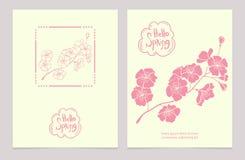 Здравствуйте! весна карточки приветствуя комплект Стоковое Фото