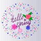 Здравствуйте! весна Стоковое Изображение RF