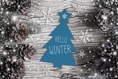 Здравствуйте! зима Стоковая Фотография