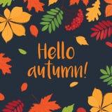 Здравствуйте! осень Стоковое Фото