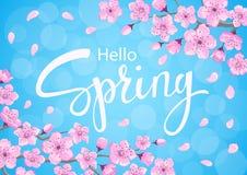 Здравствуйте! предпосылка весны с ветвями цветков вишневых цветов иллюстрация штока