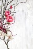 Здравствуйте! предпосылка весны с цветками Стоковое Изображение RF