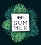 Здравствуйте! плакат лета Троповые листья Стоковое Фото