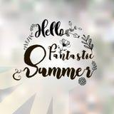Здравствуйте!, фантастическое лето Стоковая Фотография
