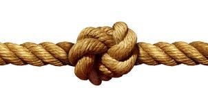 диаграмма веревочка двойника 8 узла Стоковая Фотография RF