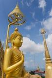 диаграмма усаживание Будды Стоковое Изображение