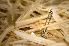 игла haystack стоковая фотография rf
