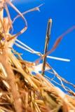 игла haystack Стоковые Фото