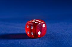 Играть в азартные игры на казино Стоковое Фото