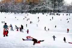 Играть в парке зимы. Стоковые Фотографии RF