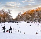 Играть в парке зимы. Стоковые Изображения