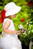 Играть в саде Стоковое Изображение