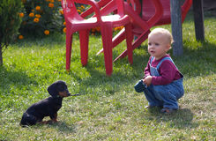 играть девушки dachshund стоковое изображение