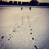 Играть детей в снеге на поле стоковое фото rf