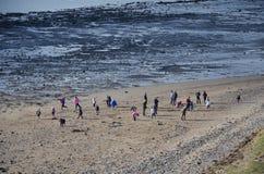 играть детей пляжа Стоковая Фотография RF