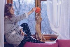 играть котенка девушки стоковые изображения rf