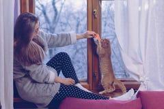 играть котенка девушки стоковая фотография
