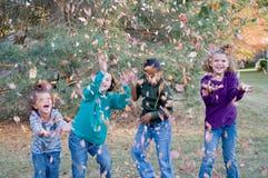 играть листьев девушок стоковые изображения