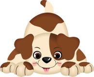 играть любимчика собаки Стоковое фото RF