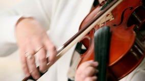 играть скрипку сток-видео