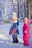 играть снежок Стоковые Изображения