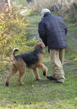 играть собаки мальчика Стоковая Фотография RF