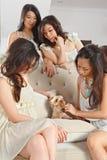 Играть с собакой Стоковое Фото