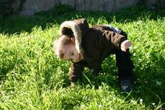 играть травы Стоковое Изображение RF