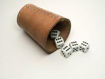 играя в азартные игры игра Стоковое Изображение