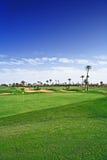 Играя в гольф курс Стоковое фото RF