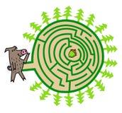 Игра лабиринта дикого кабана и жолудя Стоковые Фотографии RF