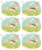 Игра Visual антилопы Стоковое фото RF