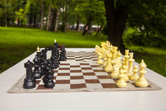 Игра в шахматы в парке стоковое фото rf