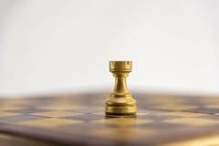 Игра в шахматы, грачонок на шахматной доске Стоковые Изображения