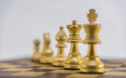 Игра в шахматы на белой предпосылке Стоковое Изображение RF