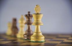 Игра в шахматы на белой предпосылке Стоковая Фотография