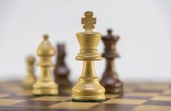 Игра в шахматы на белой предпосылке Стоковые Фотографии RF