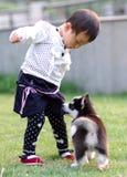 игра девушки собаки Стоковые Изображения RF