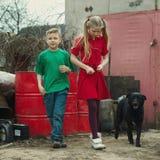 Игра детей на сбросе с собакой стоковое изображение rf