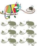 Игра Visual зеркального отображения хамелеона и мухы Стоковые Фотографии RF